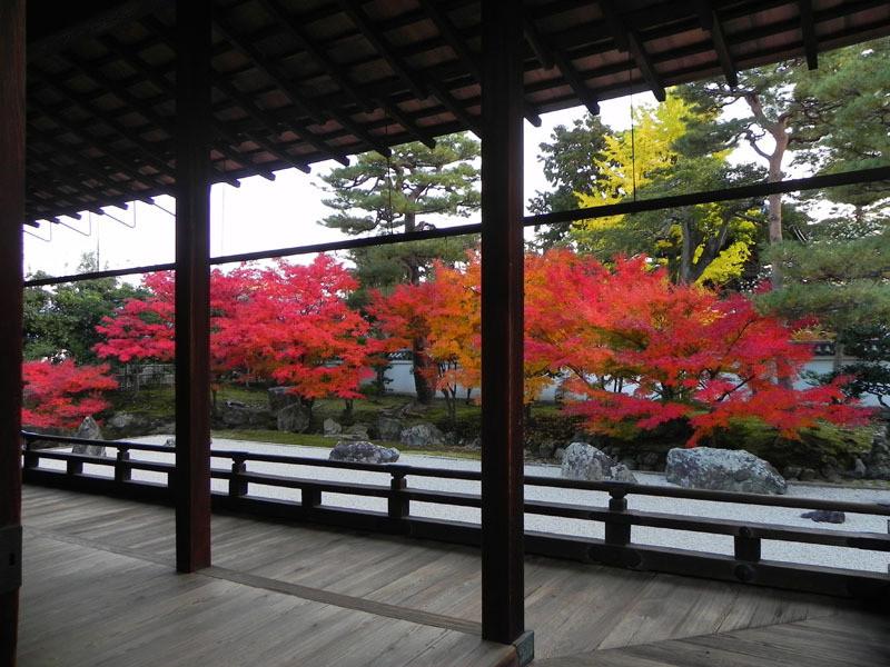相国寺の開山堂庭園の紅葉