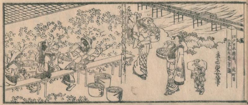 煎茶手引の種(1848年、著:山本都竜軒、画:葛飾栄女)