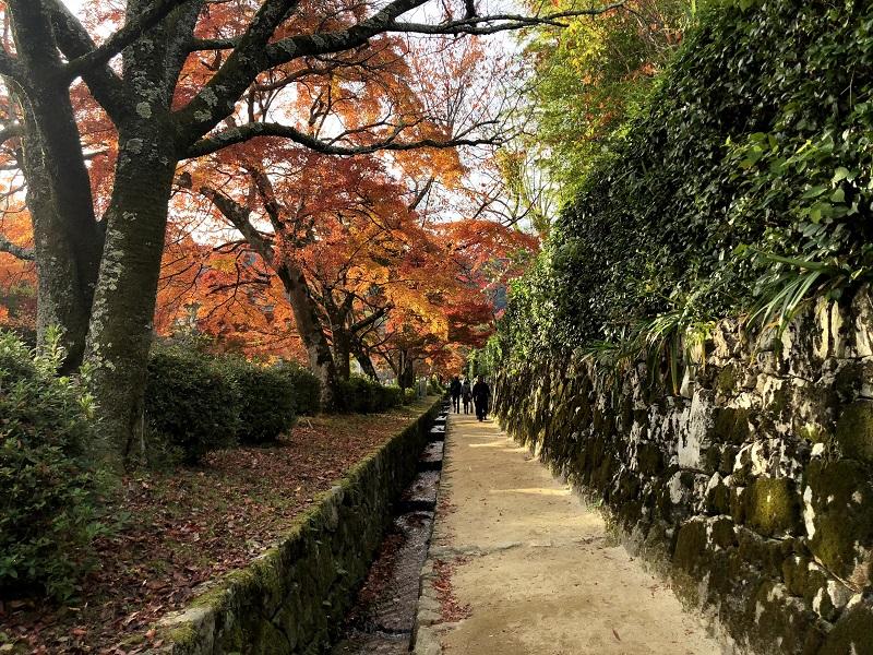 比叡山坂本の参道