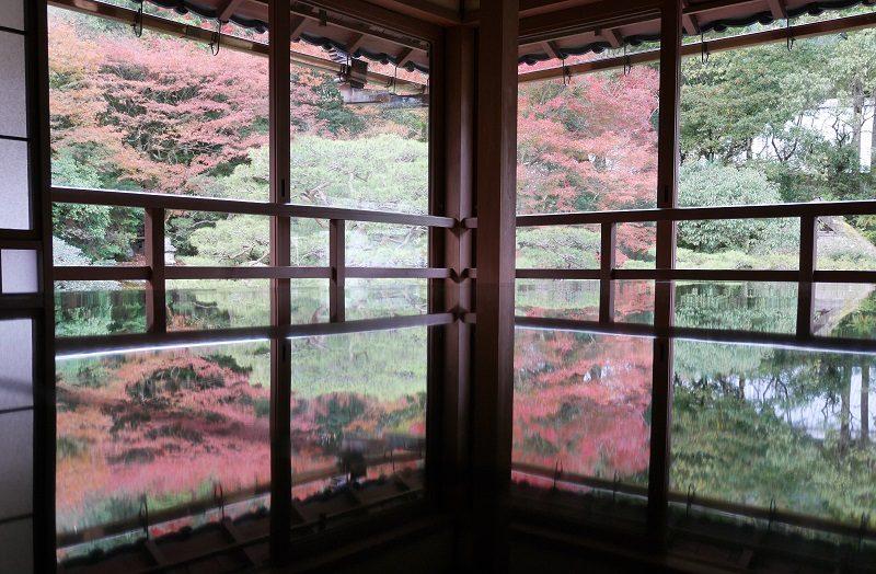 旧竹林院の床紅葉