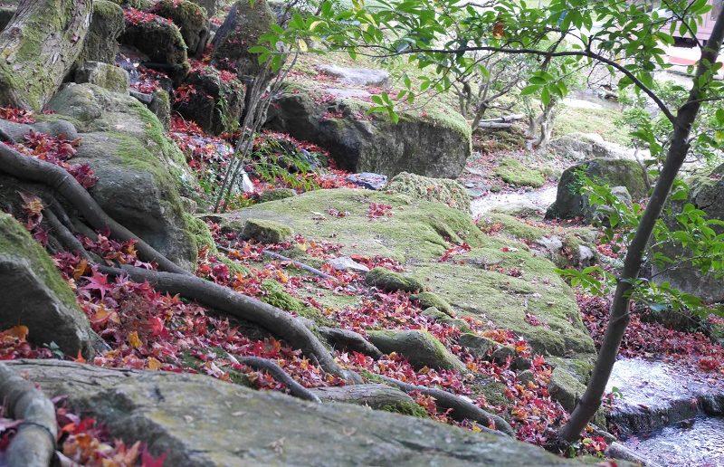旧竹林院の回遊式庭園
